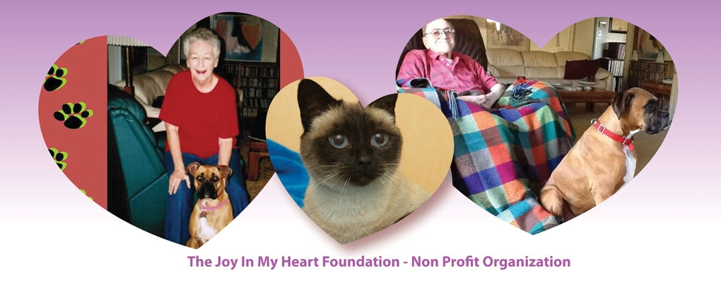 Animal Rescue Non-profit Organization